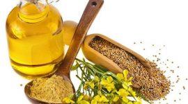 Украина: экспорт рапсового масла в 2015/16 МГ вырос на 38%