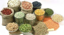 Controlul semincer – verigă importantă În obținerea roadelor bogate