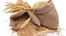 IGC повысил прогноз мирового производства зерно- вых на 23 млн т